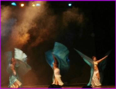 desertika-show-danza-orientale-scatti-di-bellydancedojo-7